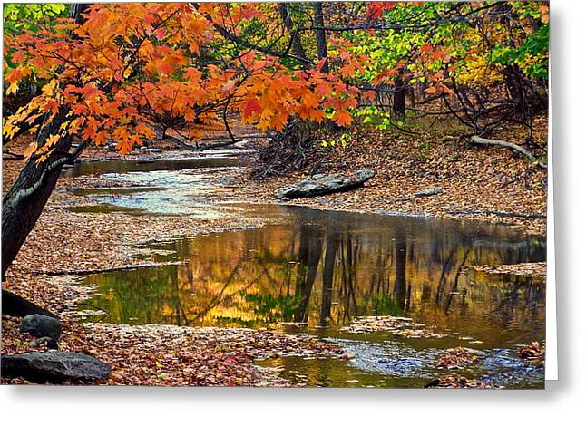 Autumn Serenity Greeting Card by Frozen in Time Fine Art Photography