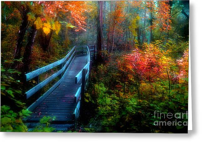 Autumn Serenity Greeting Card by Tara Turner