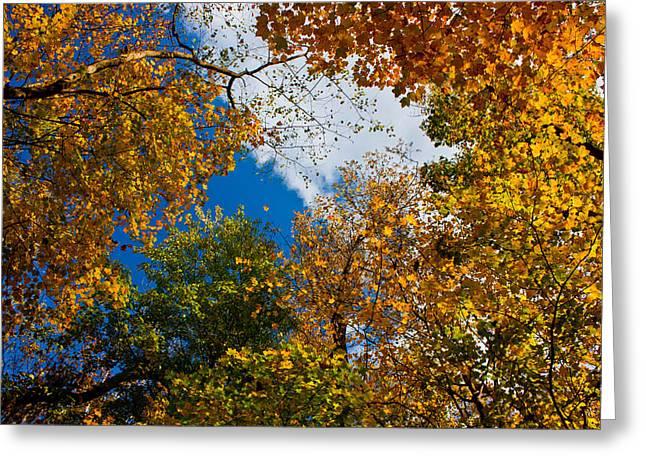 Autumn Sky Greeting Card by Claus Siebenhaar