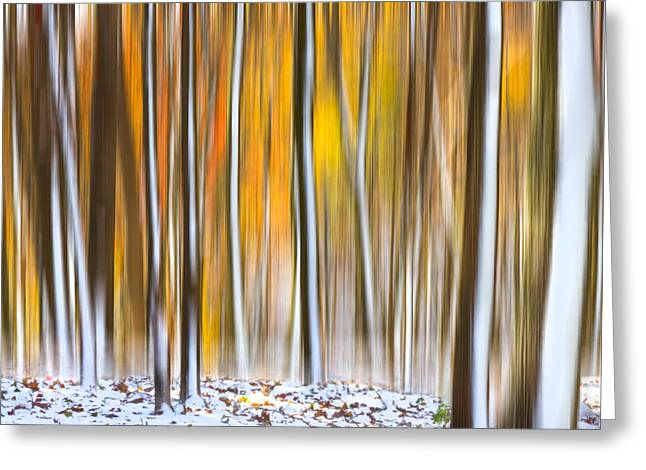 Greeting Card featuring the photograph Autumn Snow Dream by Carl Amoth