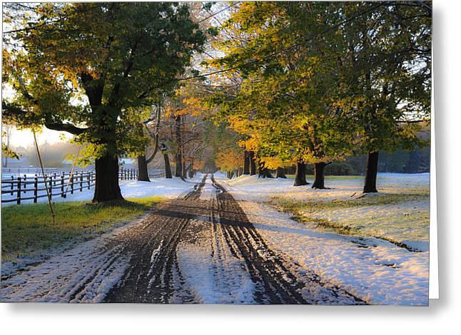 Autumn Snowfall Greeting Card by Bill Cannon