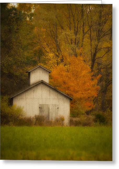 Autumn Solace Greeting Card