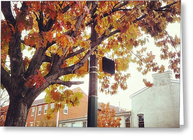 Autumn South Charles Street Greeting Card by Toni Martsoukos