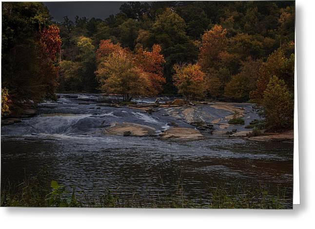 Autumn Splendor Greeting Card by Cindy Rubin