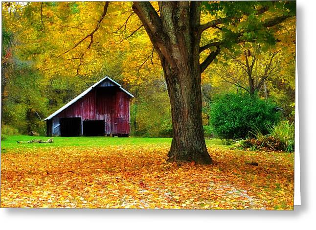 Autumn Splendor In West Virginia Greeting Card by Chastity Hoff