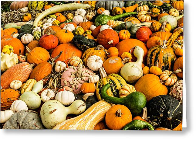 Autumn Splendor Greeting Card by Jon Woodhams