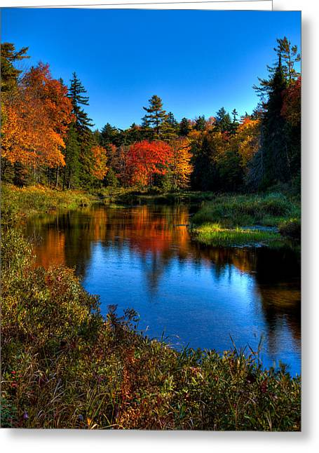 Autumn Splendor On The Moose River Greeting Card by David Patterson