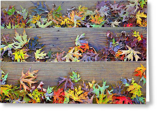 Autumn Steps Greeting Card by William Schmid