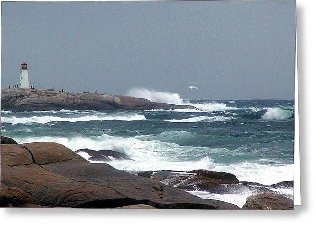Autumn Storm At Peggy's Cove Greeting Card by Janet Ashworth