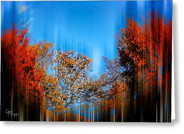 Autumn Streak Greeting Card