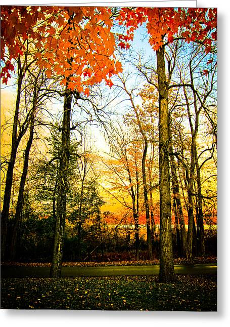 Greeting Card featuring the photograph Autumn Sunset  by Sara Frank