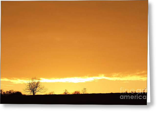 Autumn Sunset With Solitary Tree Greeting Card