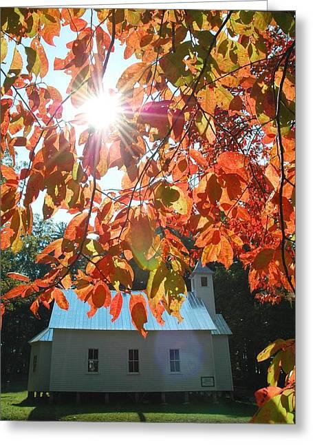 Autumn Sunshine Missionary Baptist Church Greeting Card by John Saunders