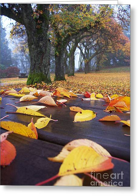 Greeting Card featuring the photograph Autumn Table by Maria Janicki