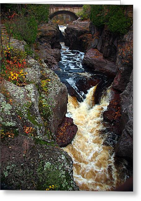 Autumn Temperance River Greeting Card by James Peterson
