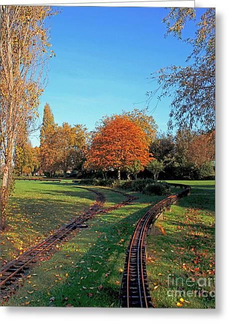 Autumn Tracks Greeting Card by Terri Waters