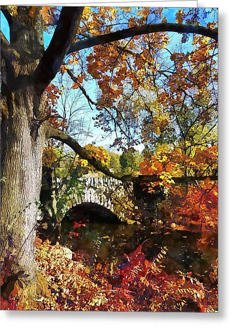 Autumn Tree By Small Stone Bridge Greeting Card by Susan Savad