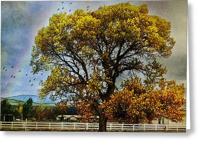 Autumn Tree In Anza Greeting Card by Rhonda Strickland