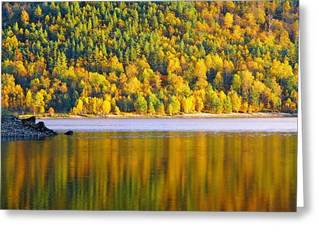 Autumn Trees At Loch Beinn A Mheadhoin Greeting Card