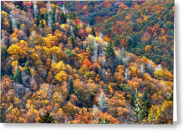 Autumn Trees In The Clouds Blue Ridge Parkway N C Greeting Card by Reid Callaway