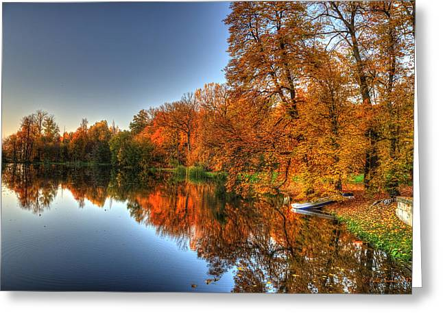 Autumn Trees Over A Pond In Arkadia Park In Poland Greeting Card