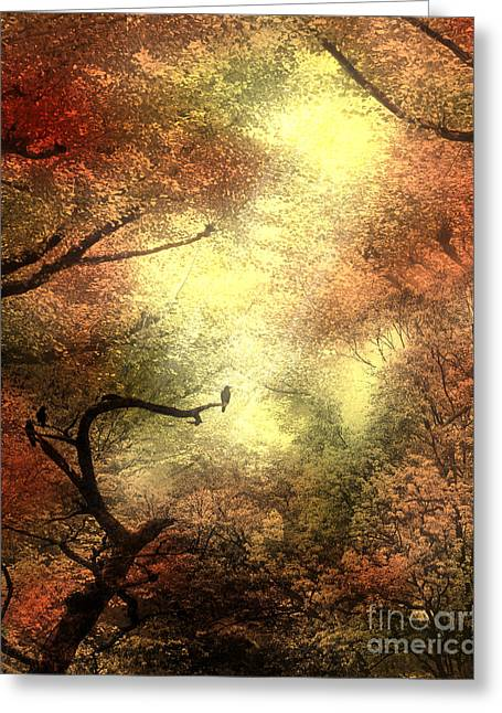 Autumn Trees With Light Shining Through Greeting Card