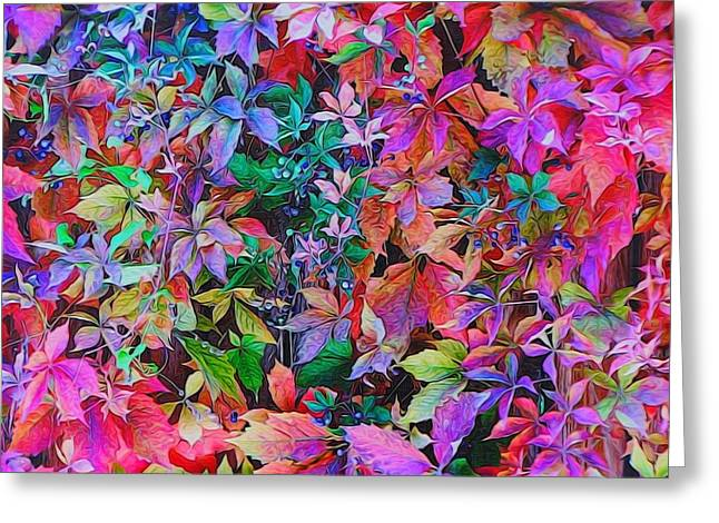 Autumn Virginia Creeper Greeting Card