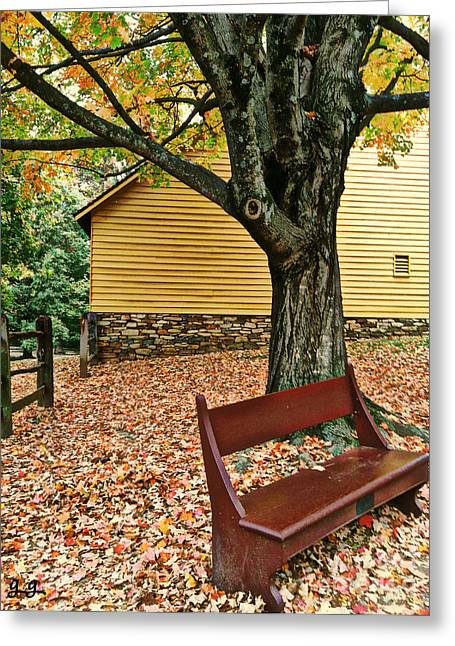 Greeting Card featuring the photograph Autumn Wait by Geri Glavis