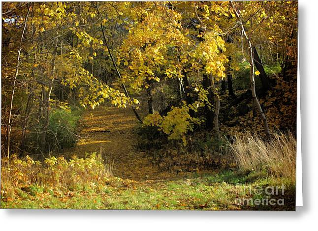 Autumn Walk Greeting Card by Lutz Baar