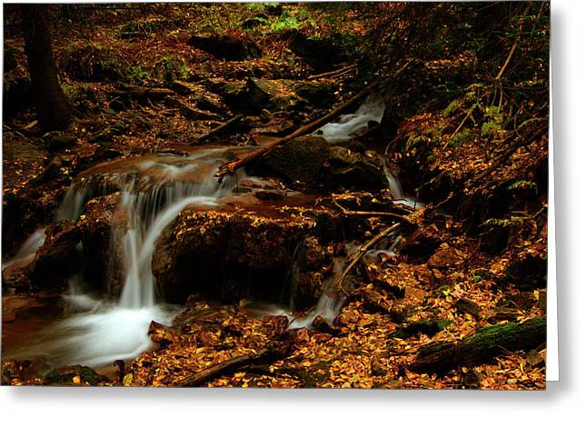 Autumn Washed Away Greeting Card