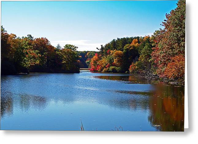 Autumn Waterway Greeting Card by Aimee L Maher Photography and Art Visit ALMGallerydotcom