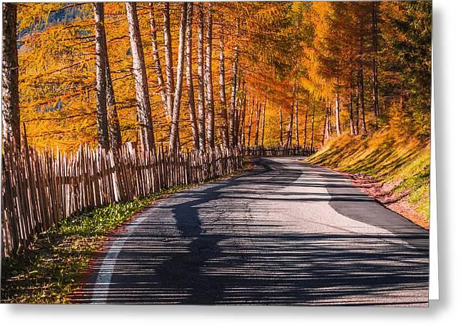 Autumn Way Greeting Card