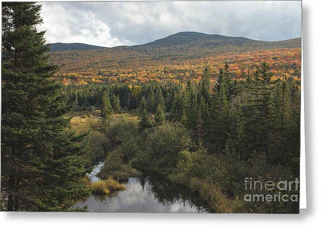 Autumn - White Mountains New Hampshire Greeting Card by Erin Paul Donovan