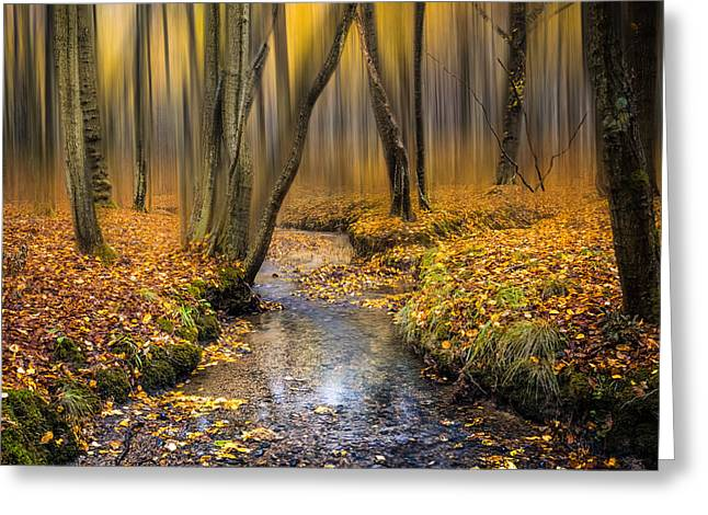 Autumn Woodland Greeting Card by Ian Hufton