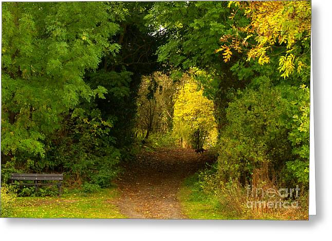 Autumn Woodland Walk Greeting Card