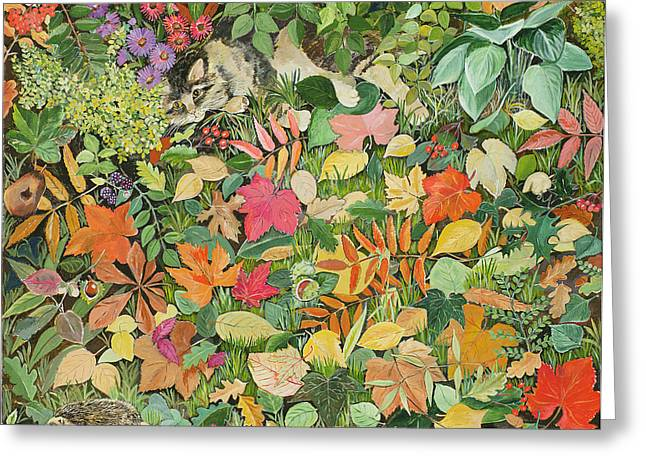 Autumnal Cat Greeting Card by Hilary Jones