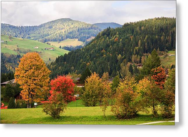 Autumnal Colours In Austria Greeting Card