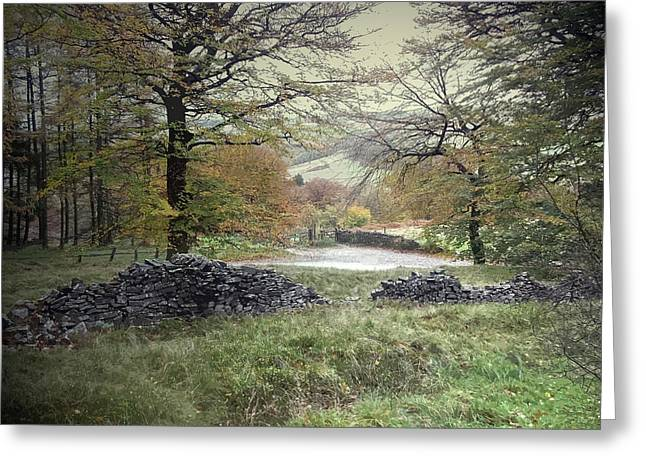 Autumnal Colours Near Fernilee Reservoir Greeting Card by Litz Collection
