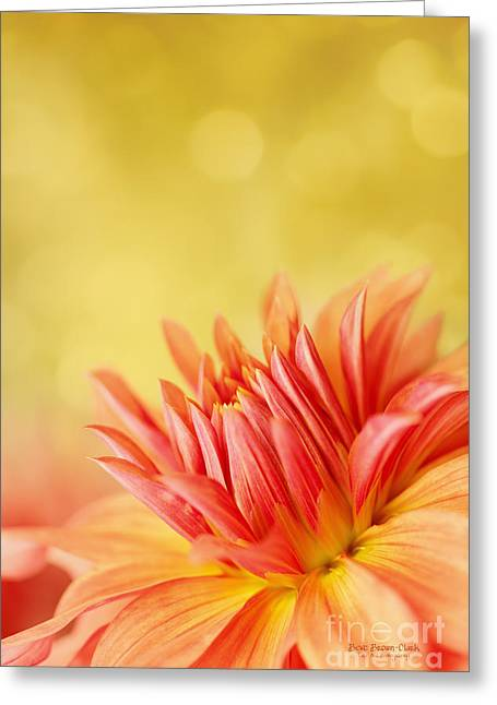 Autumns Calling Card Greeting Card by Beve Brown-Clark Photography