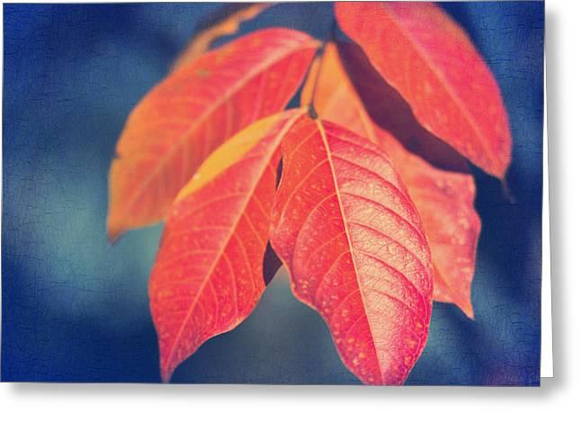 Autumns End Greeting Card