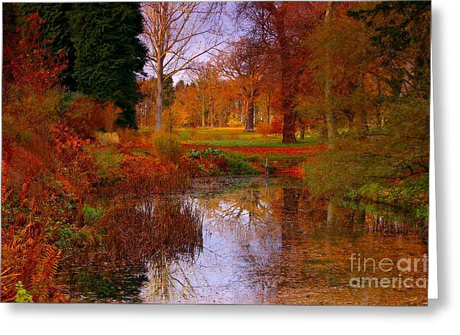 Autumn's Golden Colours Greeting Card