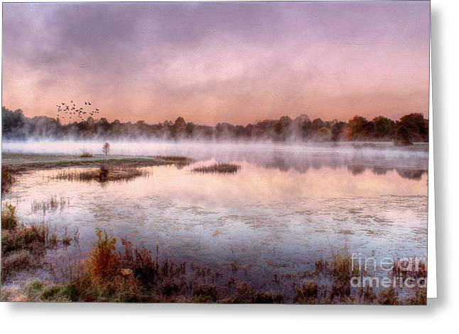 Autumns Light Greeting Card by Darren Fisher