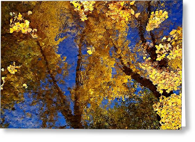 Autumns Reflections Greeting Card by Steven Milner