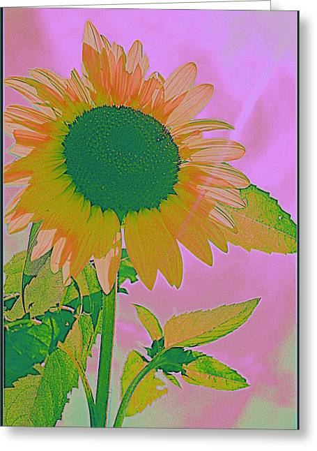 Autumn's Sunflower Pop Art Greeting Card