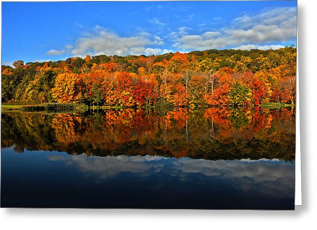 Autumnscape Greeting Card by Karol Livote