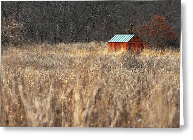 Avalon Preserve Stony Brook New York Greeting Card