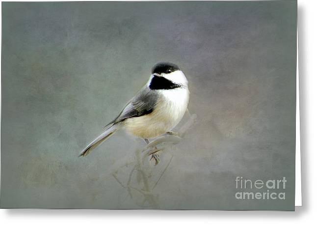 Greeting Card featuring the photograph Awaiting Spring by Brenda Bostic