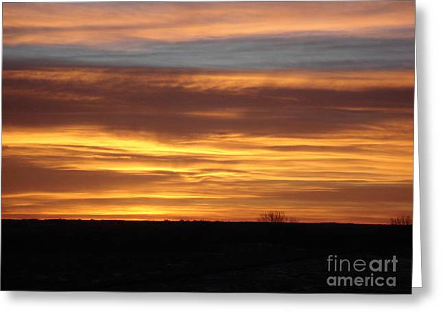Awaken The Day Greeting Card by J L Zarek