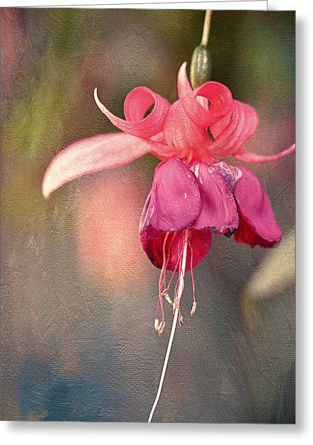 Awaking Silently Greeting Card by Maria Angelica Maira