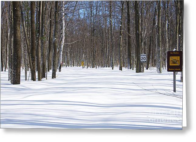 Awenda Provincial Park In Winter Greeting Card by Elaine Mikkelstrup